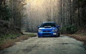 Picture Subaru, Impreza, WRX, Subaru, Impreza, STi