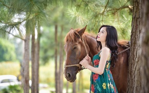 Picture summer, trees, face, horse, hair, dress, Asian