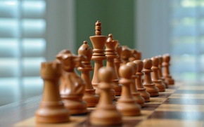 Picture macro, chess, figure
