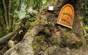 Picture forest, England, tale, the door, Winnie The Pooh, house, East Sussex, Ashdown Forest