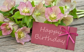 Wallpaper flowers, flowers, Happy, postcard, Birthday