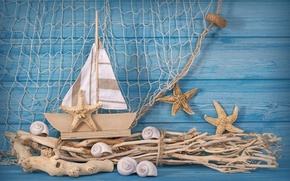 Picture stars, branches, network, ship, Tree, sail, shell