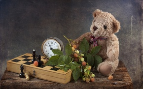 Picture raspberry, toy, watch, chess, bear, still life