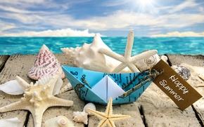 Wallpaper sea, beach, the sun, stars, shell, sunshine, beach, sea, seashells, starfishes