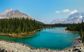 Picture forest, trees, mountains, lake, stones, Canada, Yoho National Park