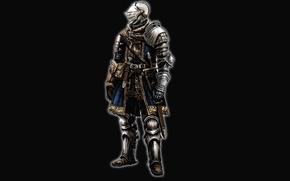Picture warrior, Dark Souls, full medieval armor