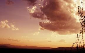 Wallpaper clouds, plants, view, clouds, the sky, grass, nature, landscape