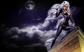 Picture look, white hair, the sky, art, cat woman, roof, the moon, night, catwoman, mask, costume