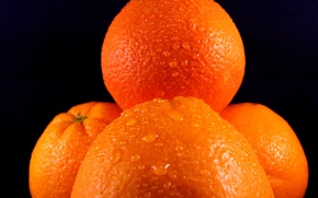 Picture water, drops, background, oranges, fruit