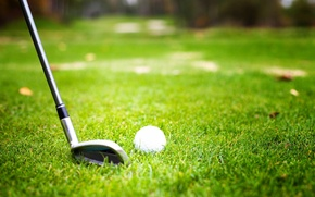 Wallpaper grass, ball, player, golf club