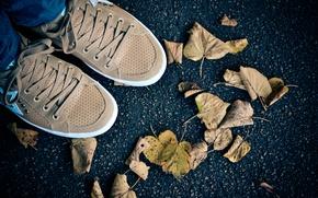 Picture autumn, foliage, shoes, sneakers, journey, autumn mood, Riga, asphalt