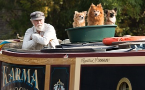 Picture dogs, the old man, Three brave in one basin