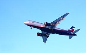 Wallpaper Airbus, the plane, Aeroflot, flight, A320
