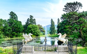 Wallpaper Park, Ireland, trees, people, sculpture, Pegasus, pond, the sky, horse, fountain, County Wicklow