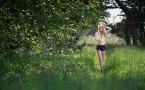 Picture summer, girl, the sun, shorts, shirt