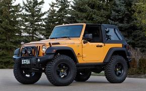 Picture car, wallpaper, jeep