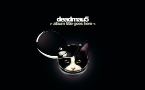 Picture Minimalism, Music, Cat, Music, Black, Electro House, Deadmau5, Dead Mouse, Deadmaus, Dead Mouse, Album Title …
