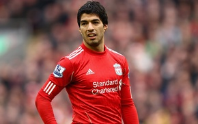 Picture football, football, Liverpool, Liverpool, YNWA, EPL, Physical therapy, Luis Suarez, Suarez, Suarez
