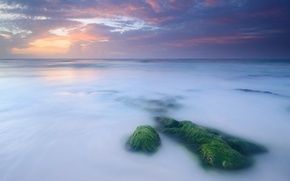 Picture clouds, shore, moss, the evening, clouds, the sky, Sea, calm, stones, sunset