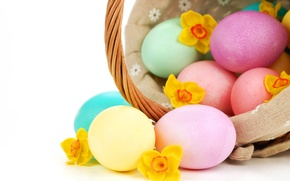 Picture eggs, Easter, daffodils, Easter