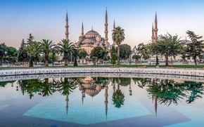 Picture trees, reflection, palm trees, pool, Istanbul, The Mosque Of Sultan Ahmet, Turkey, Istanbul, Turkey, The …