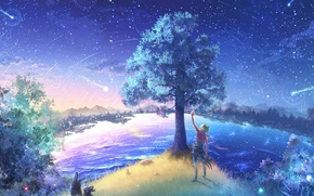 Picture the sky, night, nature, stars, anime, art
