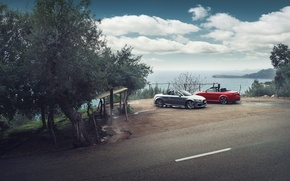 Picture Audi, Roadster, Red, Cars, Quattro, Spain, Silver
