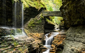 Picture bridge, stream, stones, rocks, waterfall, New York, ladder, steps, USA, Watkins Glen State Park