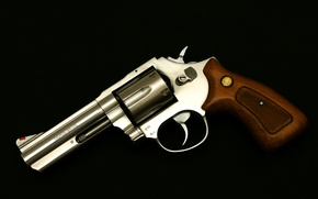 Picture weapons, background, trunk, revolver, the handle, Taurus