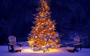Wallpaper holiday, snow, holiday, winter, lights, lights, Christmas, forest, forest, snow, happy new year, tree, Christmas ...