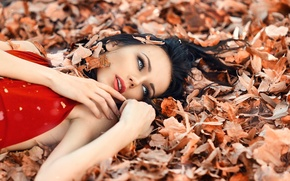 Picture leaves, girl, makeup, Alessandro Di Cicco, Perfect Autumn