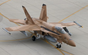 Picture fighter, the airfield, multipurpose, Hornet, CF-18