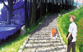 Picture road, cat, tree, gate, schoolgirl, the altar, The Natsume book of friendship, youkai, Nyanko-sensei, Takashi …