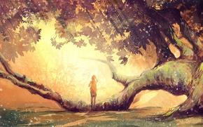 Wallpaper leaves, girl, tree, branch, moss, sunlight