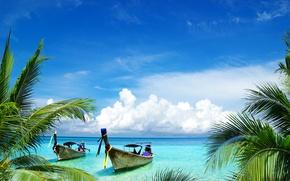 Picture sea, clouds, branches, tropics, palm trees, shore, boats, horizon
