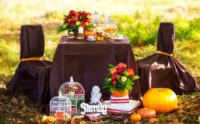 Picture autumn, leaves, flowers, coffee, roses, candles, picnic, grass