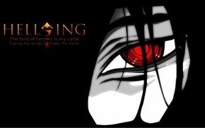 Picture fear, vampire, Hellsing, red eyes, Alucard