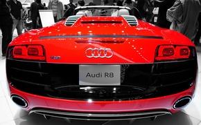 Picture Audi, Spyder, Wide, Rear