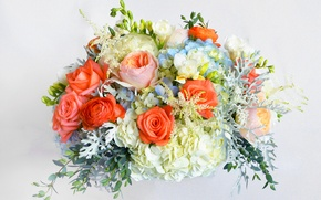 Picture flowers, roses, bouquet, rose, flowers, hydrangea, bouquet, freesia, hydrangea, freesia