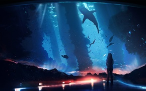Picture fish, fantasy, shark, girl, aquarium