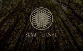 Picture Music, Wood, Logo, Post-Hardcore, Bring Me The Horizon, Metalcore, Trees, Sempiternal, Electronicore