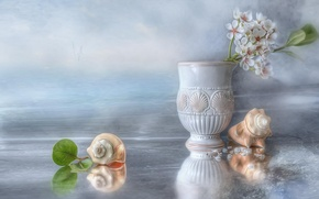 Picture ice, water, birds, petals, shell, still life, Apple, vase antique