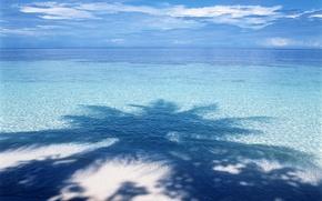 Wallpaper water, blue, Palma, shadow, horizon