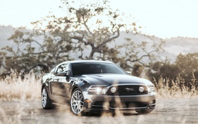 Picture Mustang, Ford, Turbo, Twin, GT