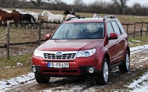 Picture Subaru, Japan, Snow, Wallpaper, Japan, Car, Auto, Subaru, Wallpapers, SUV, SUBA, Forester, Forester