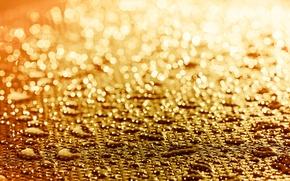 Picture drops, macro, light, bokeh