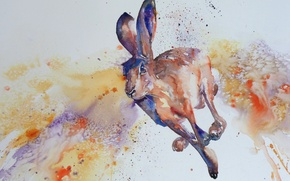 Picture style, hare, watercolor, jump