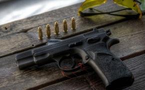 Picture gun, ammunition, firearm