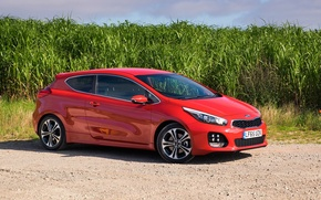Picture road, the sky, grass, sports, Red, beautiful, drives, red, side, KIA, hatchback, three doors, pro ...