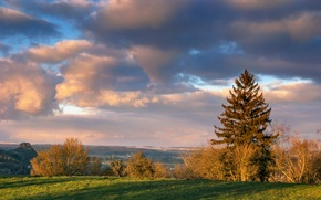 Picture field, autumn, the sky, clouds, trees, Autumn